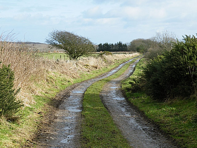 Track to Mains of Knockhall