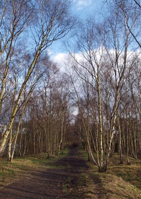 Permissive path RSPB Fairburn Ings