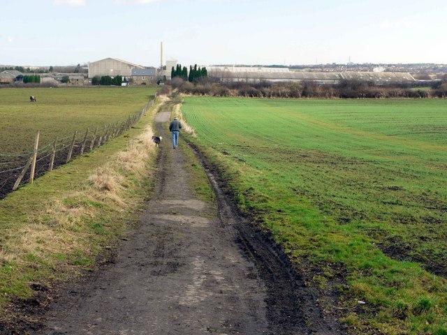 Bridleway to Throckley North Farm
