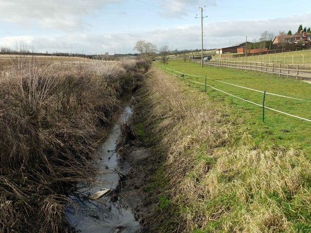 Muddy stream near Burnside Farm