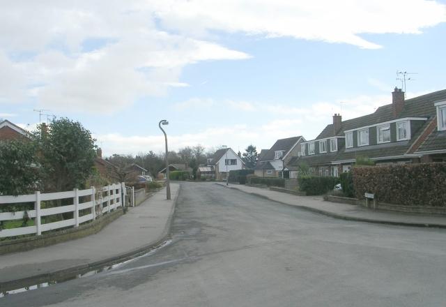 Lacy Avenue