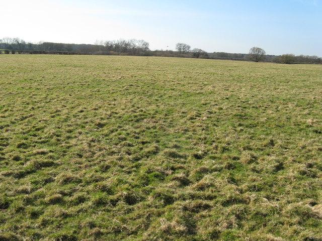 The Vanguard Way crosses an empty field
