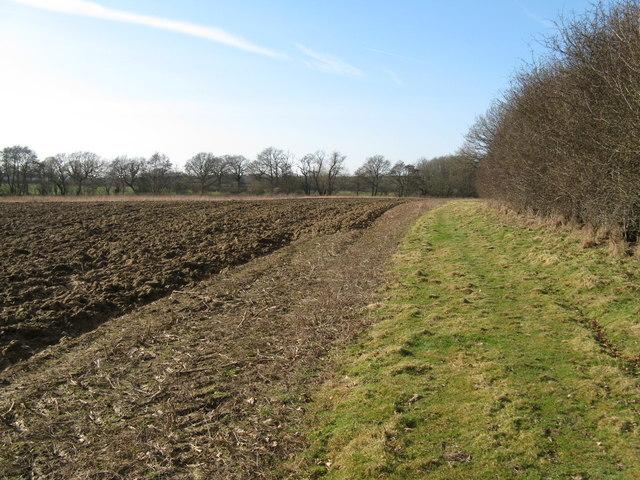 Footpath alongside ploughed field