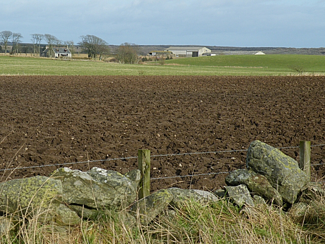 Looking Towards Little Haddo