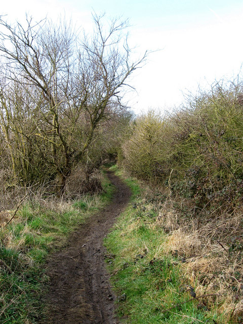Footpath to Newhaven