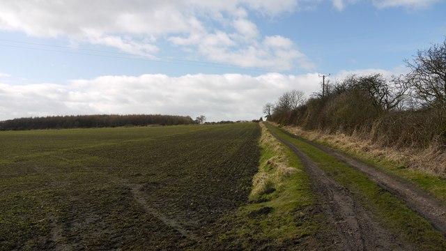 Bridleway west of Crescent Farm