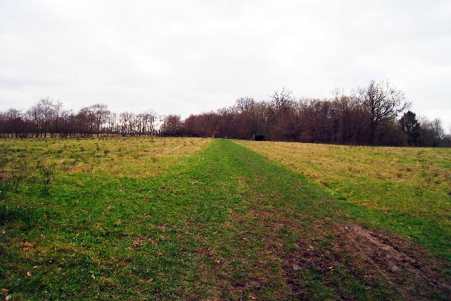 Field near Pond Bay