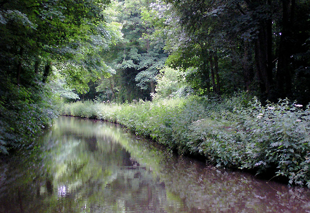 Trent and Mersey Canal near Armitage, Staffordshire