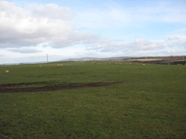 Grazing lands in Midlothian
