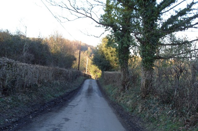 Tidy Little Lane