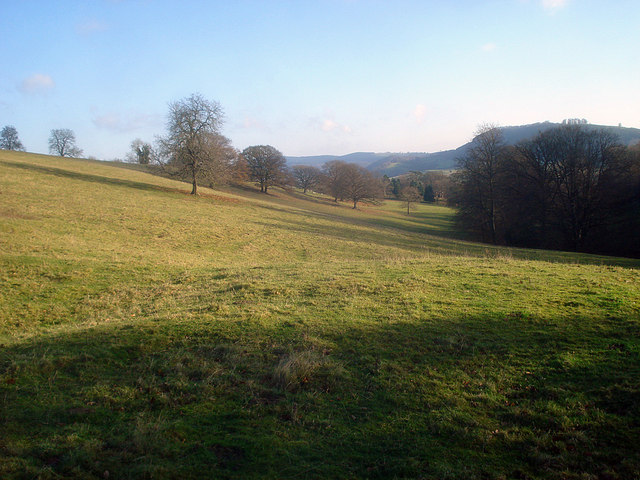 Sheep pasture near Barn Farm
