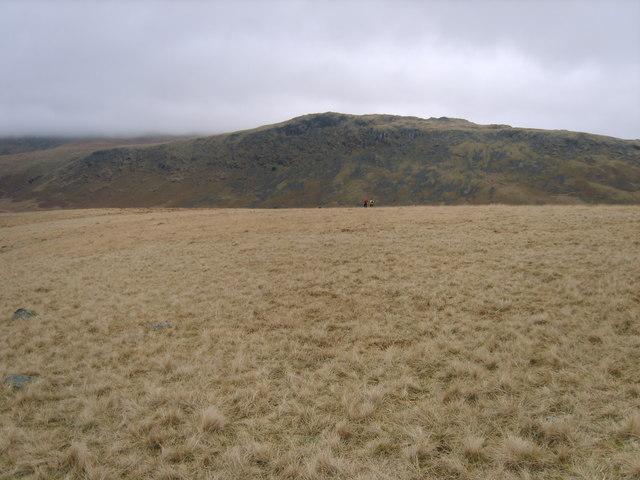 Eskdale Moor