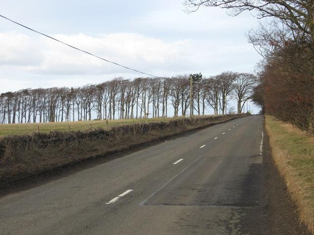 The B6367 near Tynehead