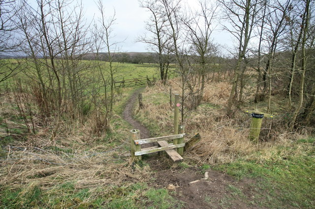 The Wyre Way Heads for Scorton