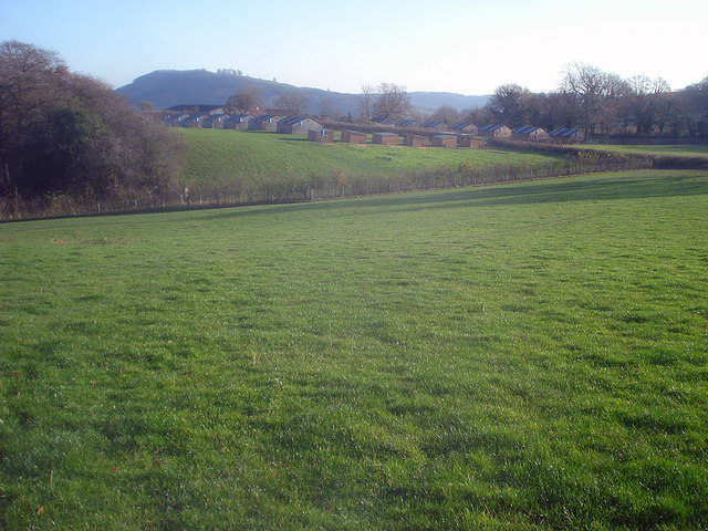 Pasture at Barn Farm