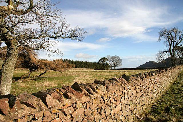 Bowdenmoor Stell