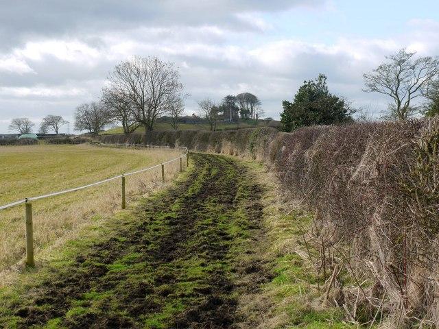 Footpath west of Birney Hill Farm