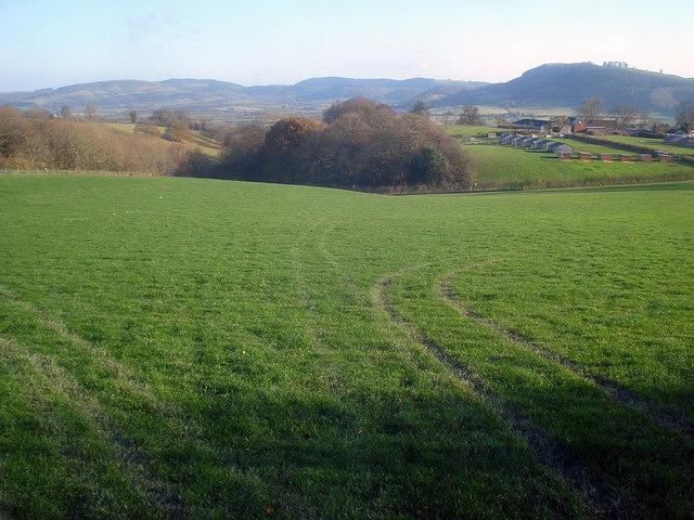 Farmland at Barn Farm