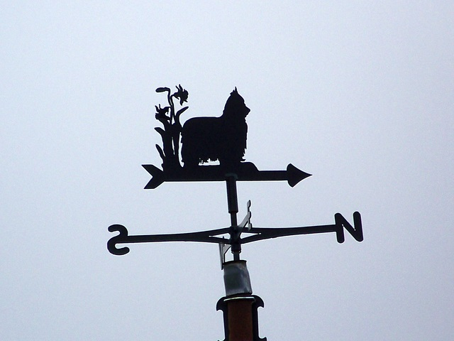 Weather vane, Thornicombe