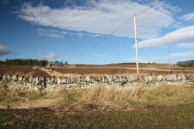 Dry stone wall, Lunanhead