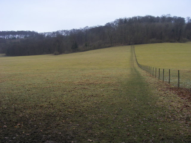 Footpath up to Idlecombe Wood