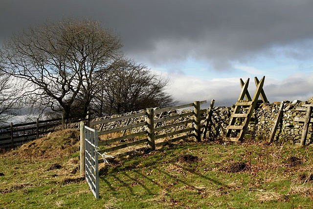 A stile on Selkirk Common