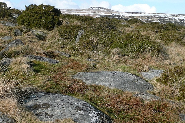 Stones on Dartmoor