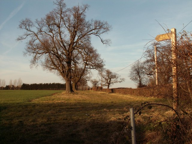 Public footpath to Blackmore from Wenlocks Lane