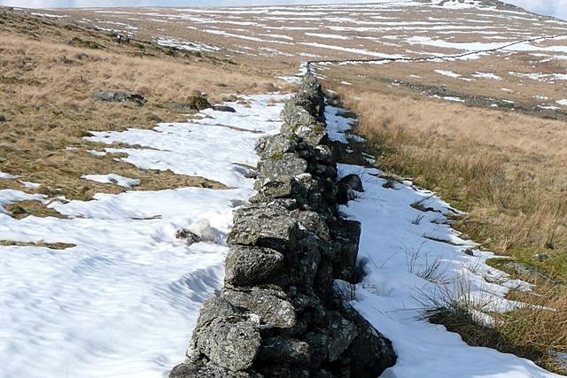 Higher White Tor from slope of Littaford Tor