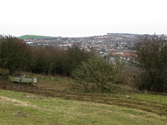 View across Folkestone rooftops from Creteway Down 3