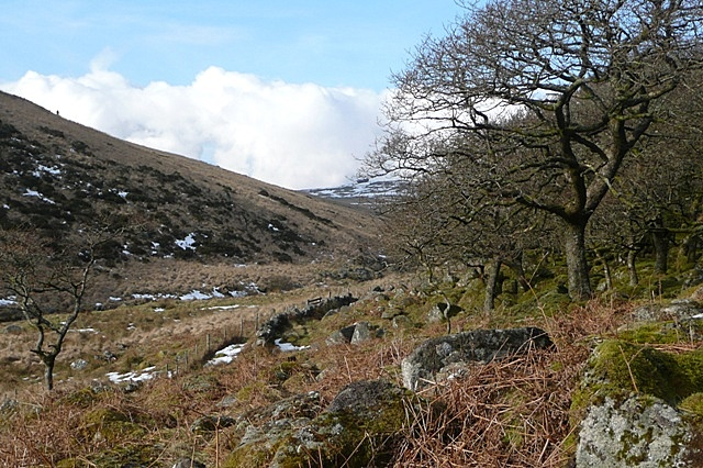 West Dart valley