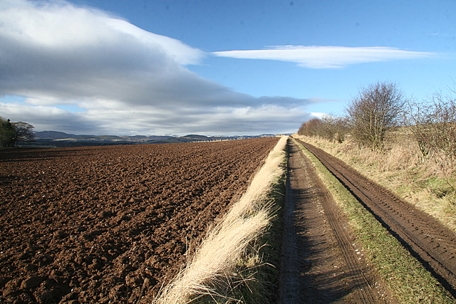 Farm track near Baggerton farm