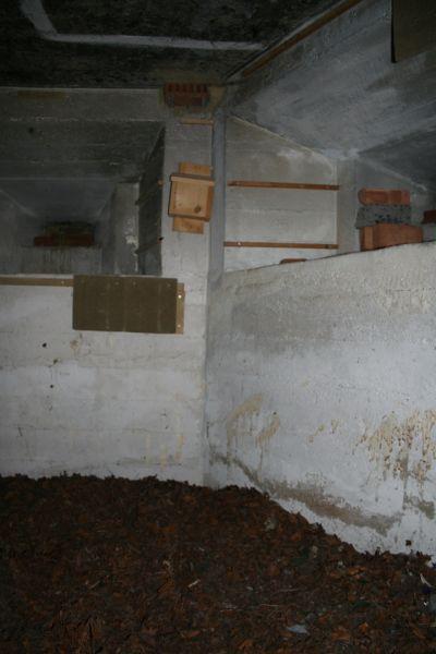 Inside the pillbox