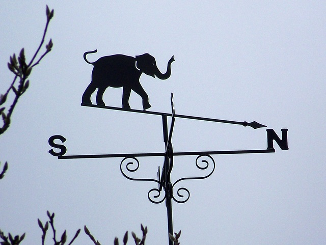 Weather vane, Affpuddle