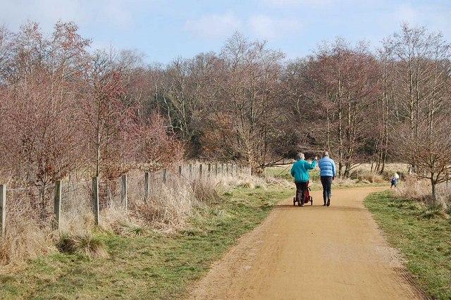 Footpath and cycleway, Verwood, Dorset