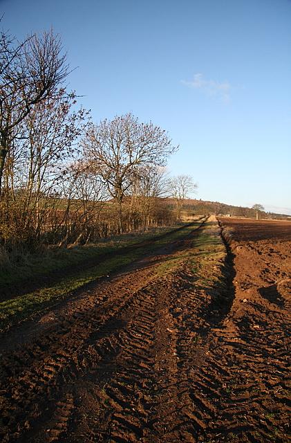 Farm track near Nether Hayston