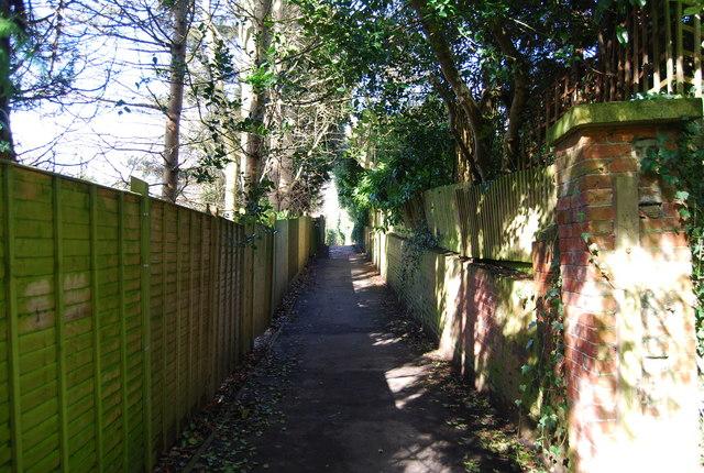 Upper Cumberland Walk