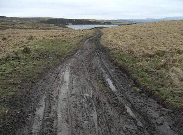 Muddy bridleway