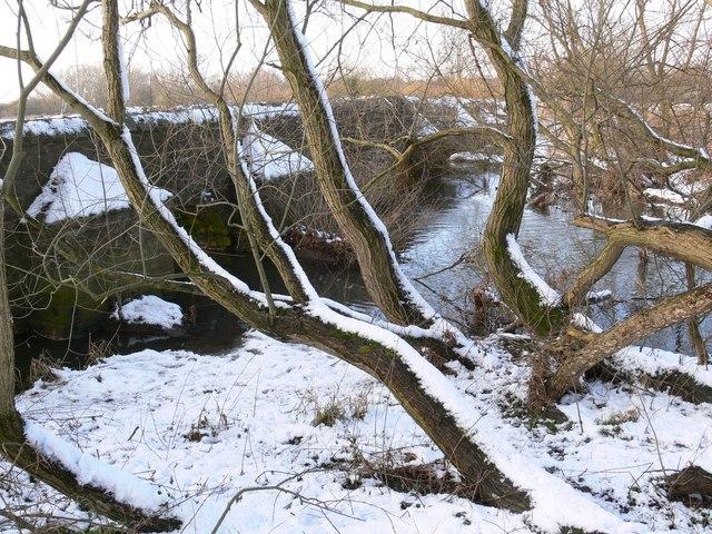The snow covered Packhorse Bridge, Aylestone