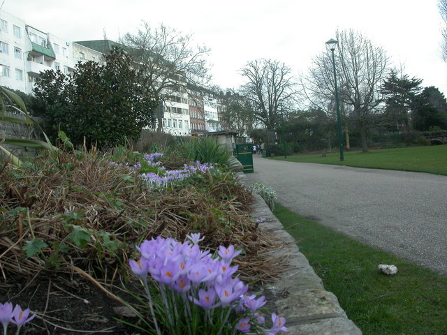 Bournemouth Central Gardens, crocuses