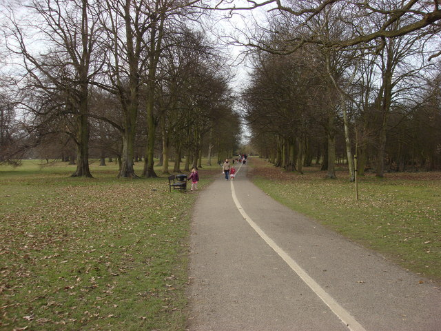 Tree lined avenue, Cassiobury Park