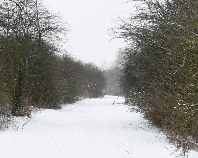 Snow covered track across the Aylestone Meadows