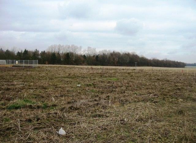 Field boundary in winter