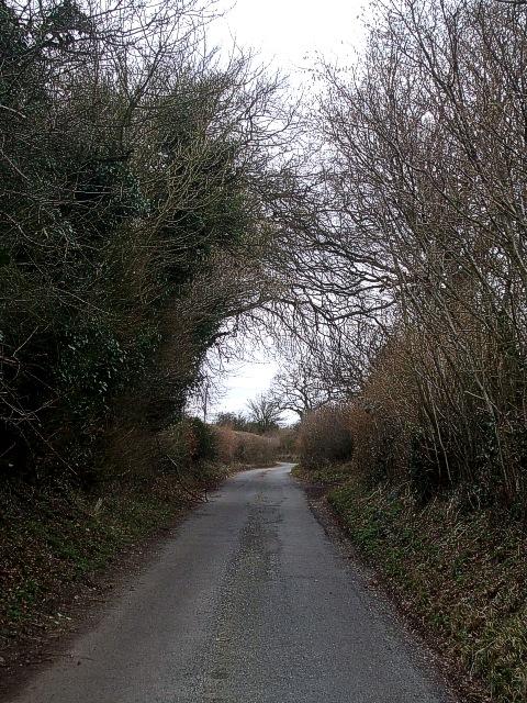 Isle of Wight Lane, view northwestwards