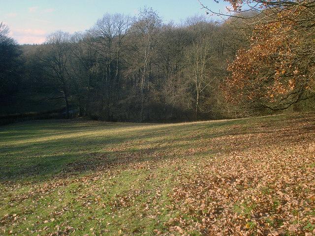 Footpath near Barnett Wood