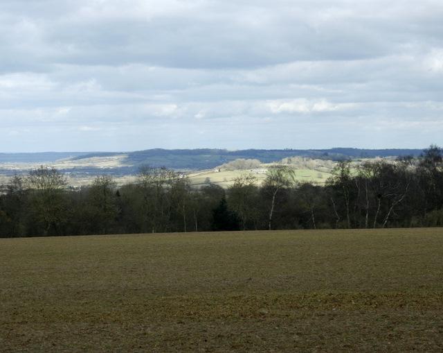 2009 : View North, top of Naish Hill