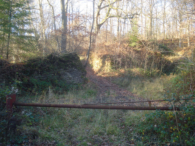 Old quarry in Barnett Wood