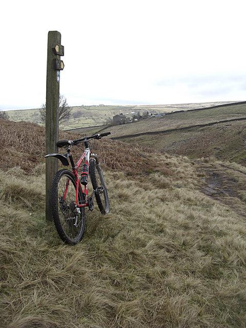 Bronte Way near Brink Ends