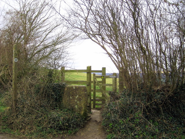 Footpath to Coker Hill Lane