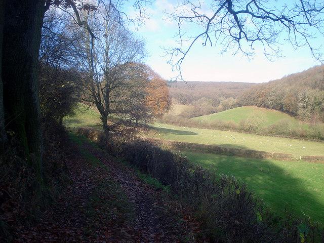Farm track near Woodhampton Farm